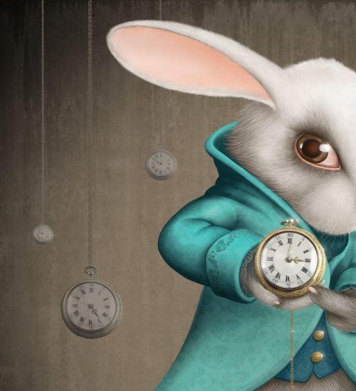 Beyaz Tavşanı Takip Etmek