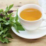 Stres Giderici Hint Fesleğeni Çayı