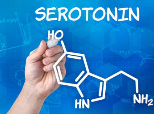 Serotonin Nedir?
