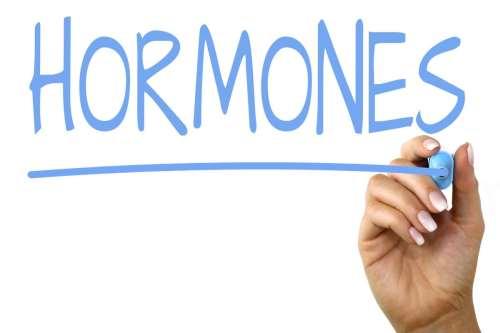 stres hormonu