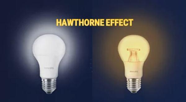 Hawthorne etkisi sonuçları
