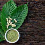 Kratom Çayı Nedir? Kullanımı Psikolojik Fiziksel Faydaları