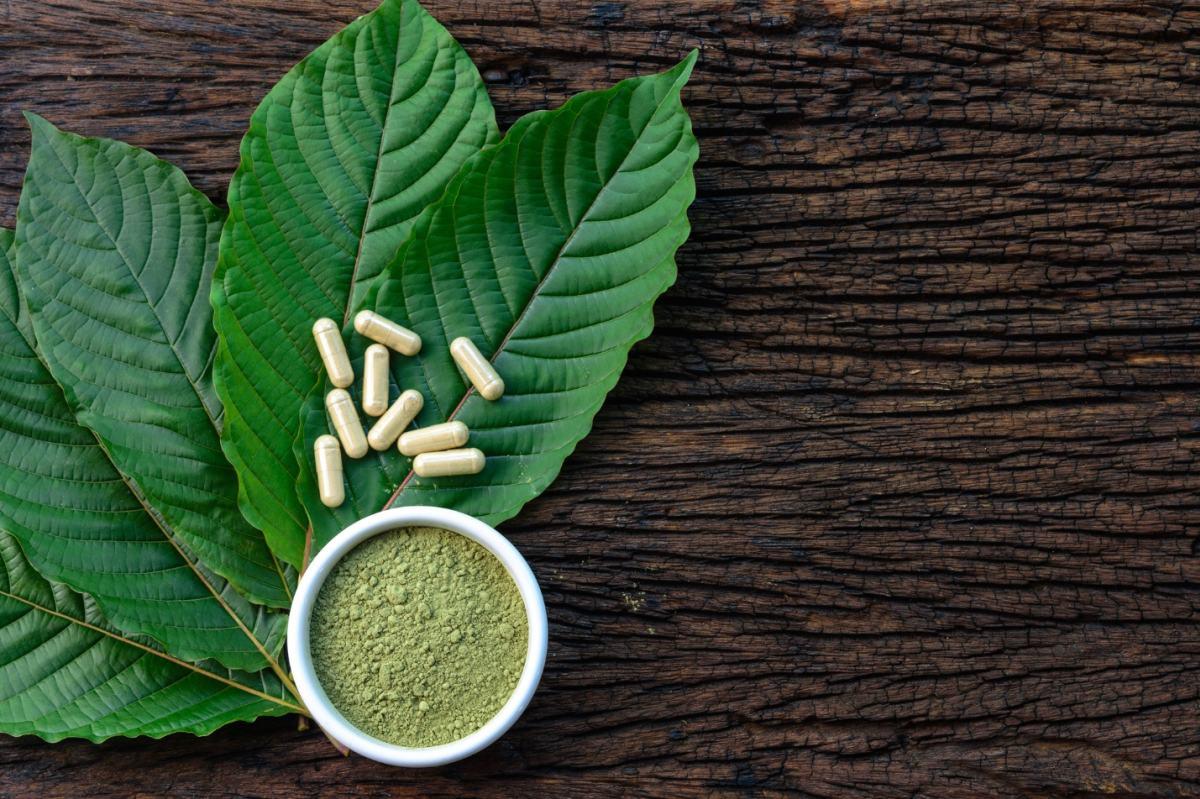 kratom çayı yaprakları faydaları
